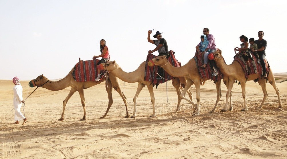 camel ride Abu Dhabi