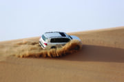 shore-excursions-abu-dhabi-4-hour-afternoon-desert-experience