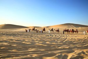 Emirates Tours & Safari
