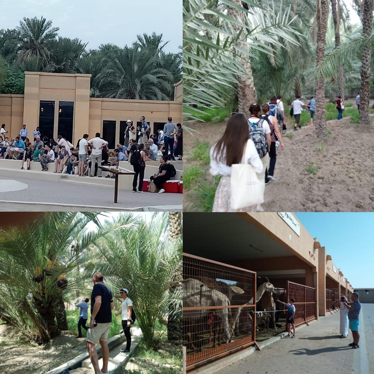 AL ain tour in abudhabi